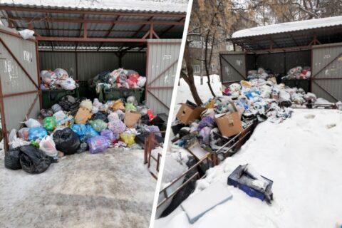 В Новосибирске из-за снега мусоровоз не заезжал во двор два дня