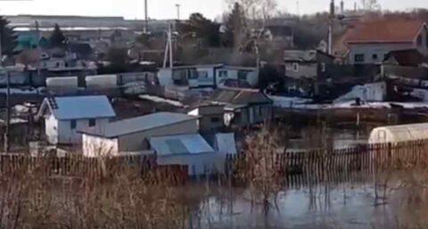 Река Тула затопила дома в садовом товариществе в Новосибирске