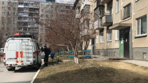 Помощь спасателей потребовалась трем новосибирским детям