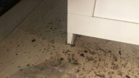 В Новосибирске квартиру затопили фекалии