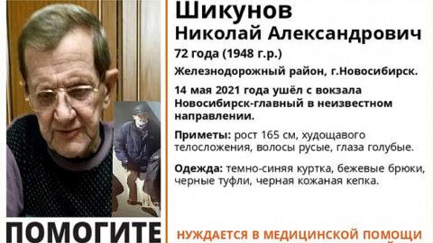 В Новосибирске ищут пенсионера