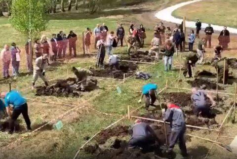 Соревнования по скоростной копке могил прошли в Новосибирске