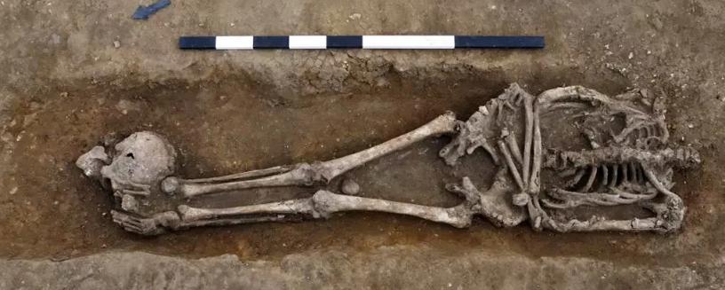 Обнаружены 17 обезглавленных древнеримских останков, и никто не знает, почему они были убиты