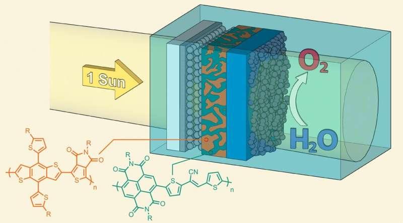 Искусственный лист из полупроводниковых полимеров