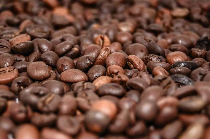 Высокое потребление кофеина может быть связано с повышенным риском слепоты глаз