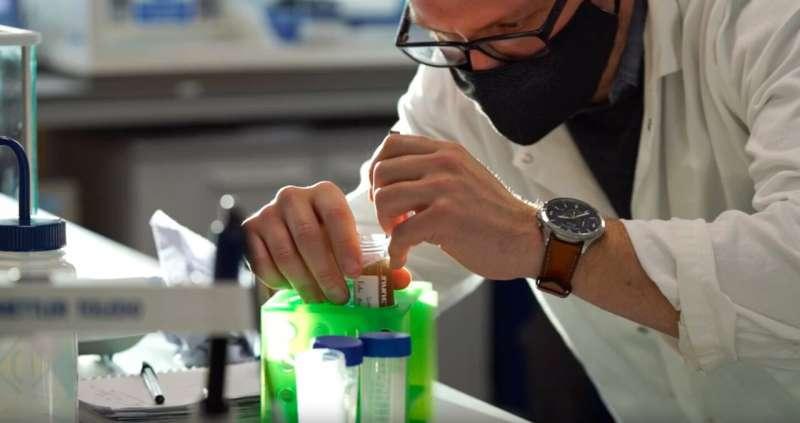 «Веганский паучий шелк» представляет собой экологичную альтернативу одноразовому пластику