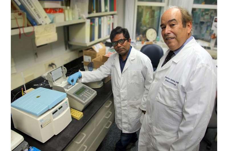 С возрастом недостаток триптофана изменяет микробиоту кишечника и усиливает воспаление