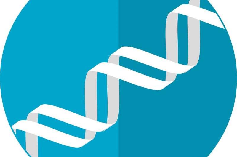 Выделены варианты генов, связанных с контролем массы тела
