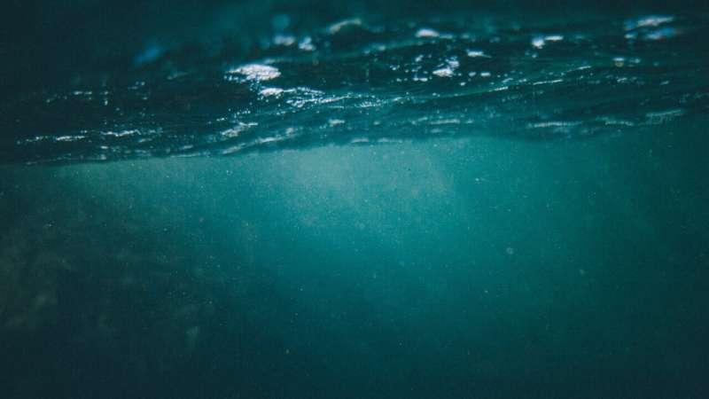 Математическая модель предсказывает движение микропластика в океане
